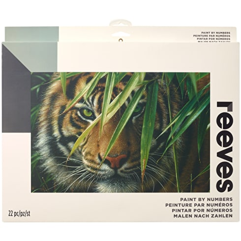 Reeves Paint by Numbers Large Sets Assorted Colours
